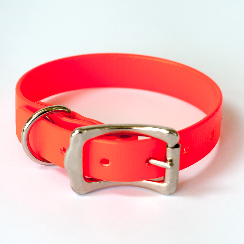 small-collar-orange-2